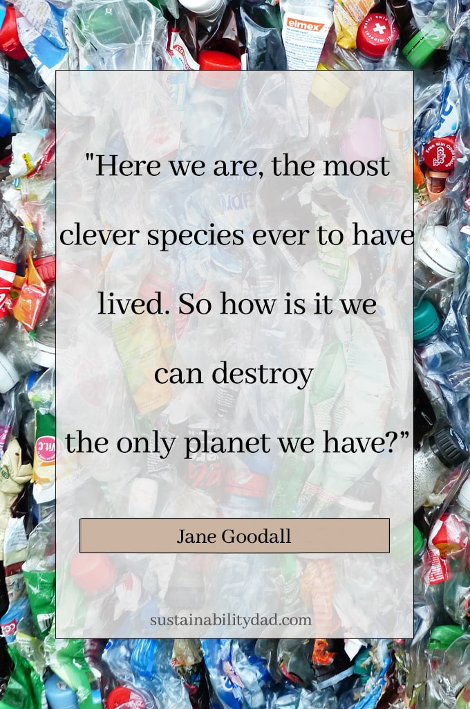 sustainability quote clever species