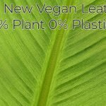 the new vegan leather 100% plant 0% plastic