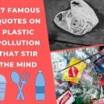 27 Famous quotes on Plastic Pollution That Stir The Mind