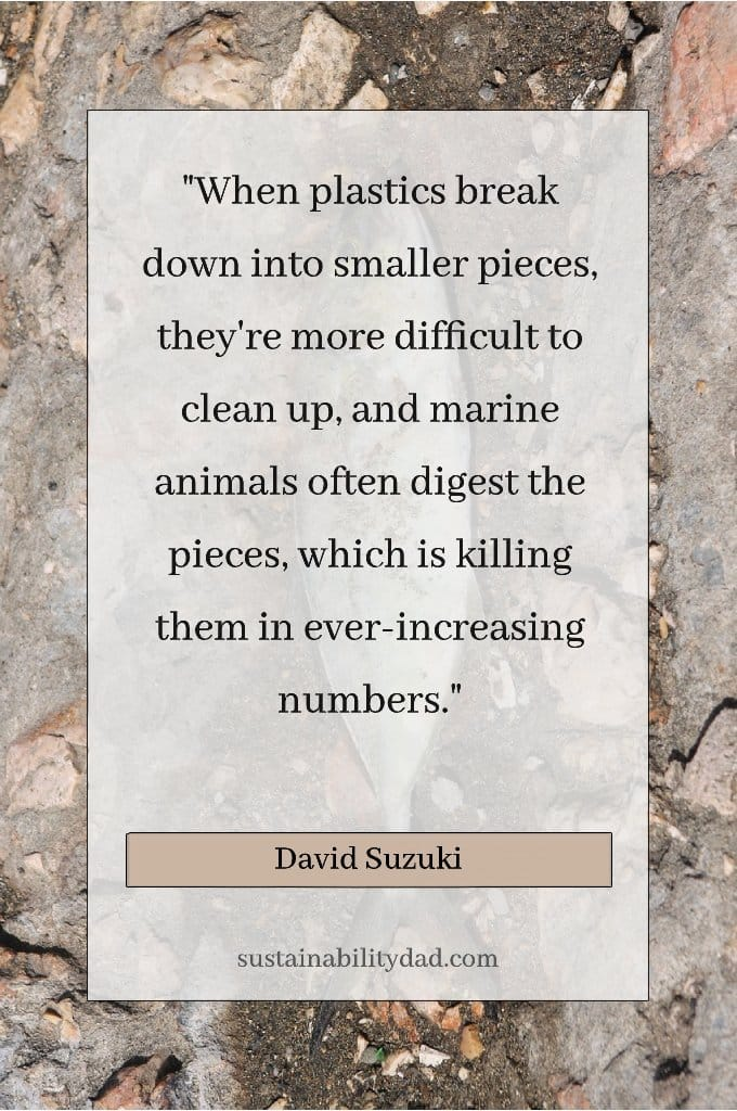 Dead-Fish-Plastic-Pollution-Waste-Quotes