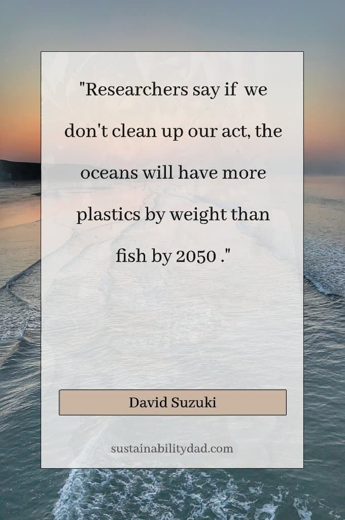 Fish-Plastic-Free-Waste-Pollution
