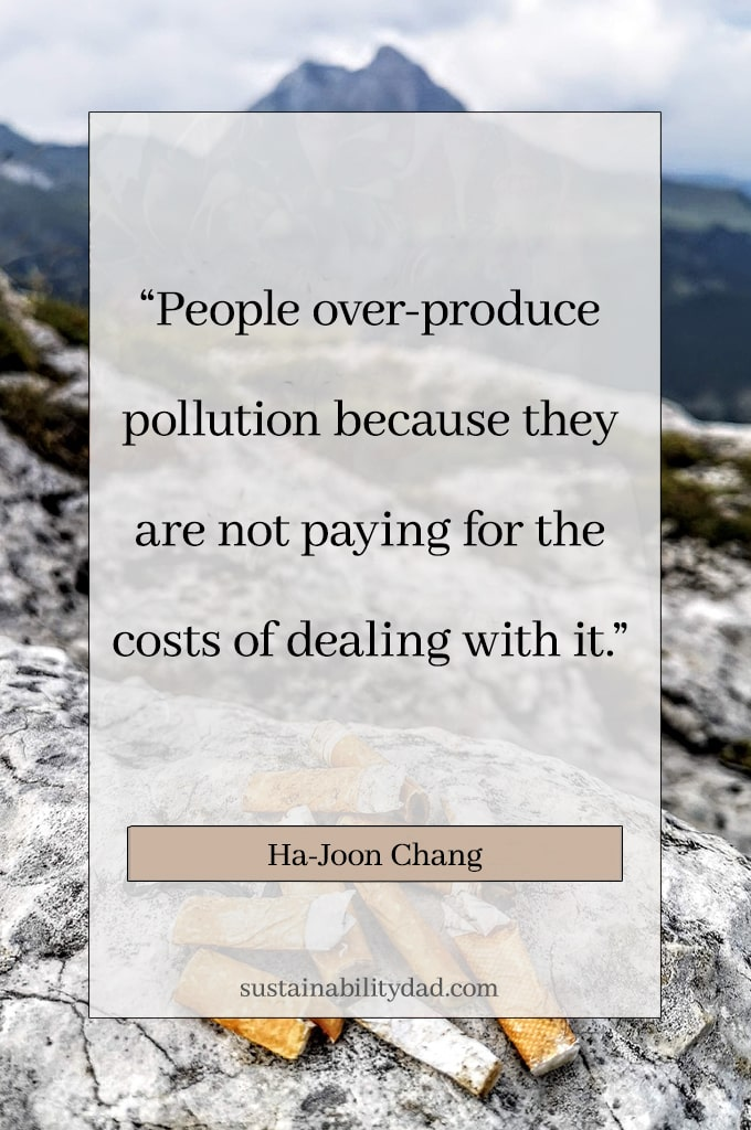 Eco-warrior and sustainability quotes - not paying for the cost