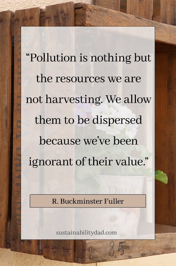 Eco-warrior quote about sustainability pollution is nothing