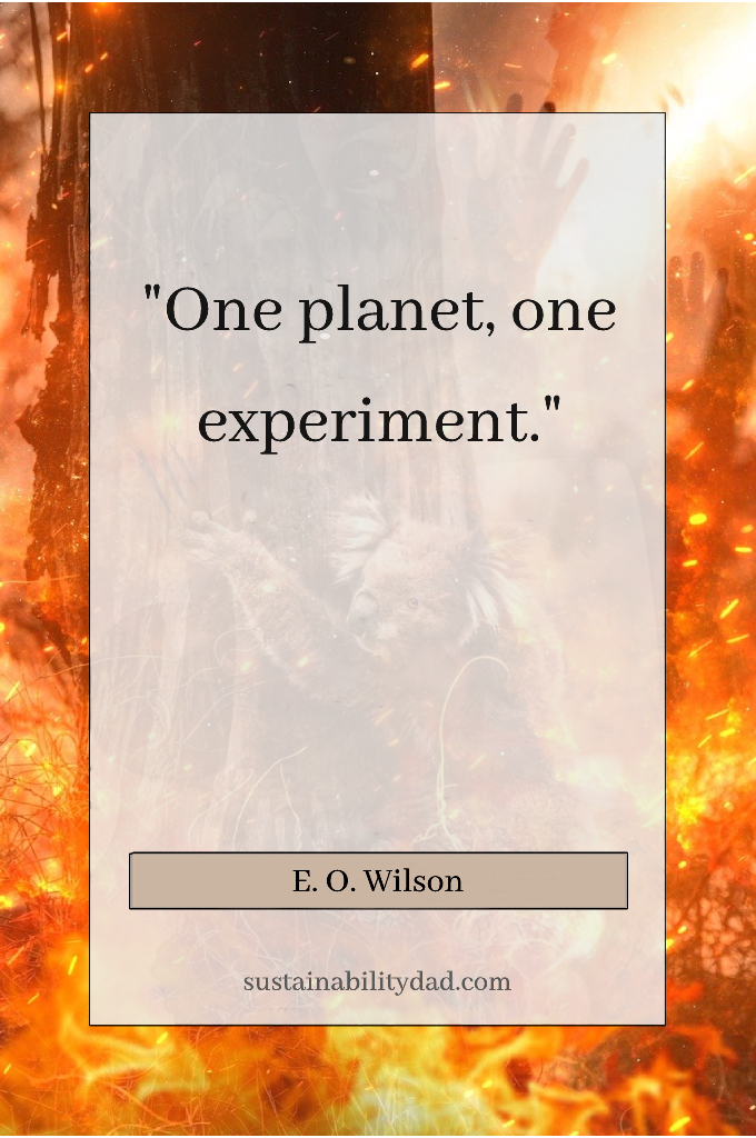 one planet one experiment quote - burning earth in picture