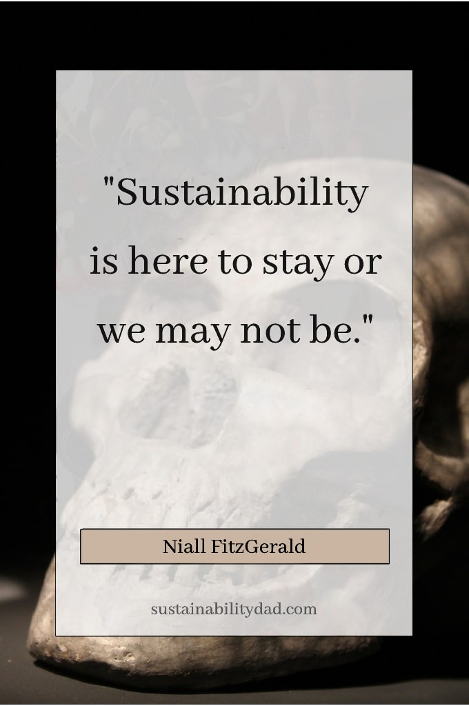 sustainability quote - sustainability here to stay