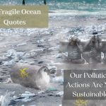 27 Ocean pollution quotes