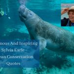 37 Sylvia Earle quotes ocean conservation