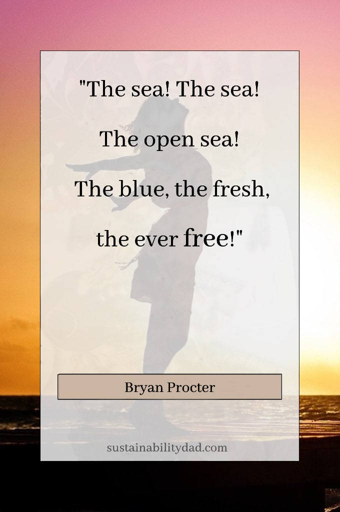 Beautiful ocean free