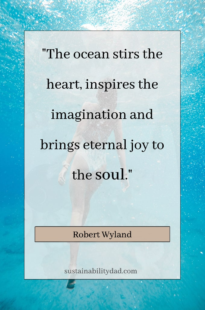 beautiful ocean soul
