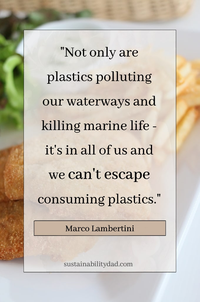 fragile plastic oceans plastic in food fish and chips
