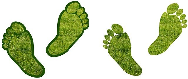 sustainable living carbon footprint grass feet
